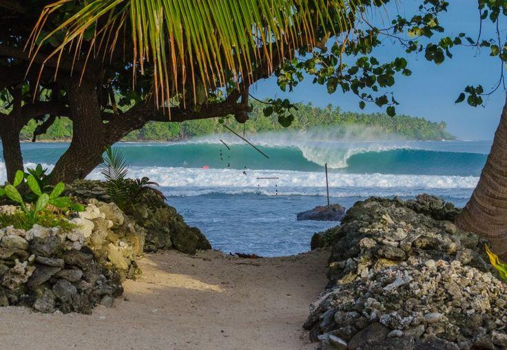Tupira Surf Club   World Surfaris PNG