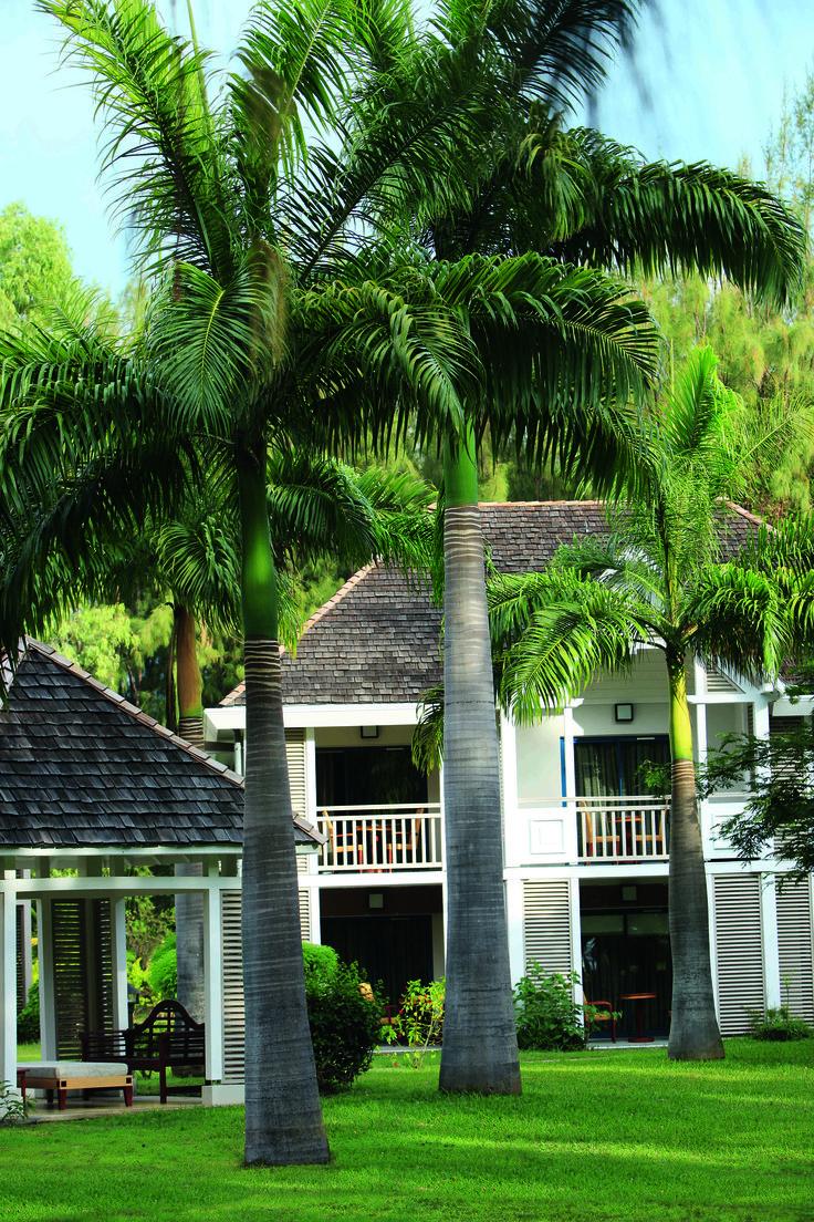 Lux Reunion hotel room ! #Island