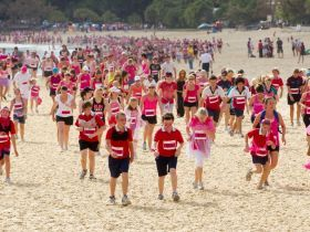 Sunshine Coast's favourite sporting festival. #queensland #noosa #sunshine #coast #beach