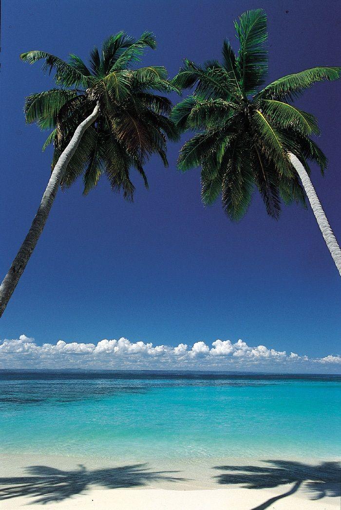 #RepubliqueDominicaine . La plage de Juanillo à Cap Cana. Elle fait partie des huit plages de Punta Cana. Très réputée pour son calme et sa longue plage de cocotiers. http://vp.etr.im/fcf8