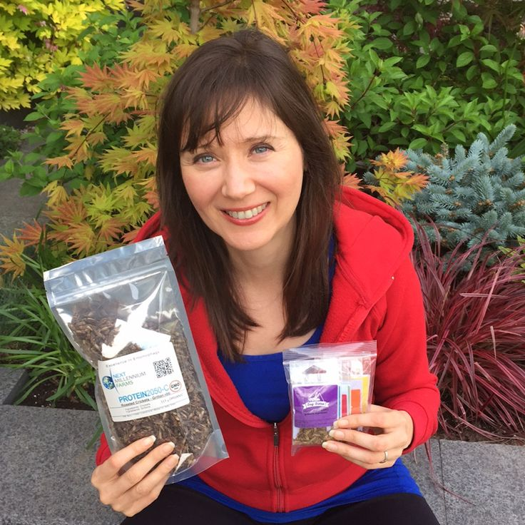 Would You Eat BUGS…To Save The Planet & Heal Your Body?