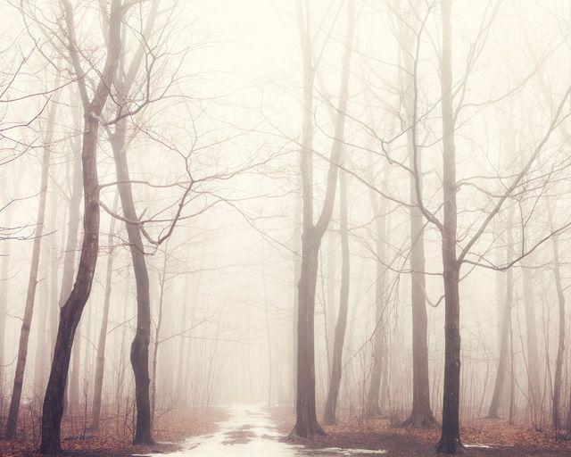 eye poetry - the photo blog of fine art photographer Irene Suchocki