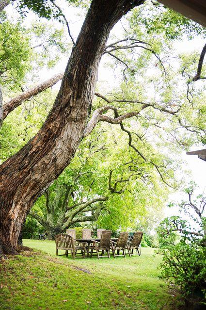 The Historic Hawaii Ranch of the Baldwin Family | Homes: A Breath of Fresh Air - WSJ.com