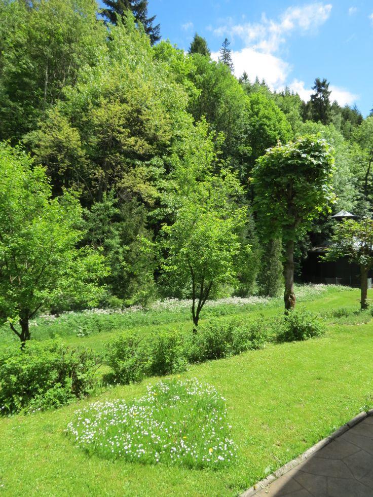 Romantyzm ogrodnika...