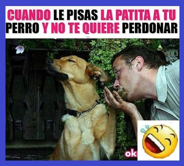 Hacer Un Meme Divertido Lol Lmao Hilarious Laugh Photooftheday Friend Crazy Witty Instahappy Joking Epic Memes Funny Spanish Memes Pinterest Memes