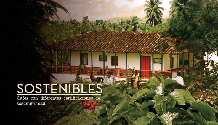 Sostenibles | Juan Valdez® Café