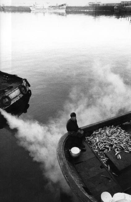 Ferdinando Scianna - Spain. Vigo. 1969. The fish market at dawn.