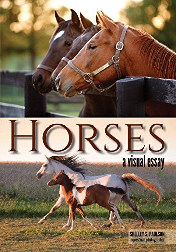 Available 2018! Horses: A Visual Essay