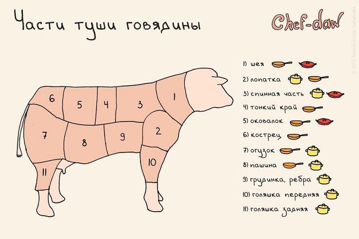 Части туши говядины - Кулинарные советы в картинках