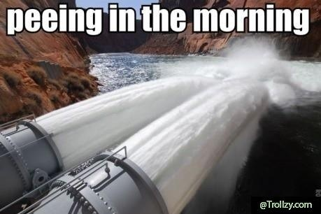 Peeing In The MorningHilarious Memes, Funny Pics, Funny Pictures, Funny Stuff, Teenpost, Humor, Teen Post, Mornings, Funny Memes
