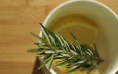 Chá de Alecrim Para Emagrecer 5kg em 20 Dias
