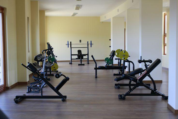 La Palestra - The Gym