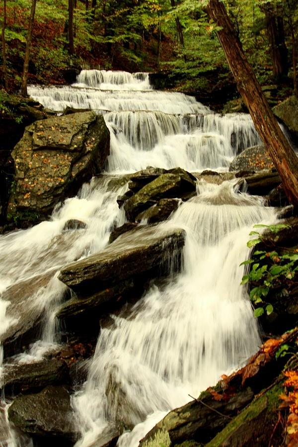 Turkey Path Waterfall Leonard Harrison State