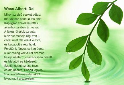 Wass Albert: Dal