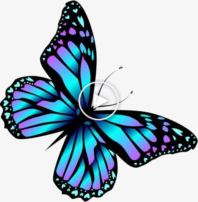 Mariposa Azul De Dibujos Animados Cuadros De Mariposas Tatuajes De Mariposa Imagenes De Mariposas