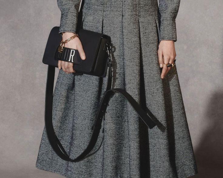Dior-Pre-Fall-2018-Bags-17.jpg 1,000×801 pixels