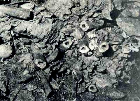 Η αρχαιολογική έρευνα κατέρριψε το μύθο του Καιάδα