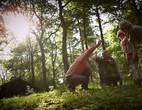 Luxury forest breaks, ideal for mulit generational groups