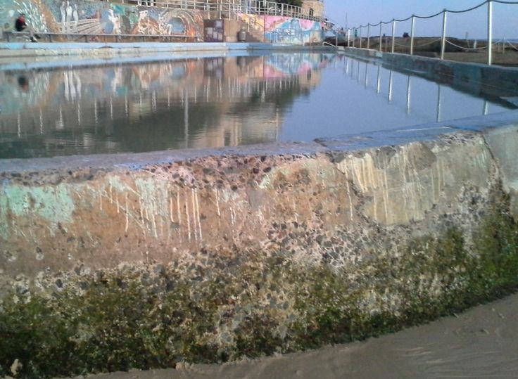 Public swimming pool north Bondi Beach