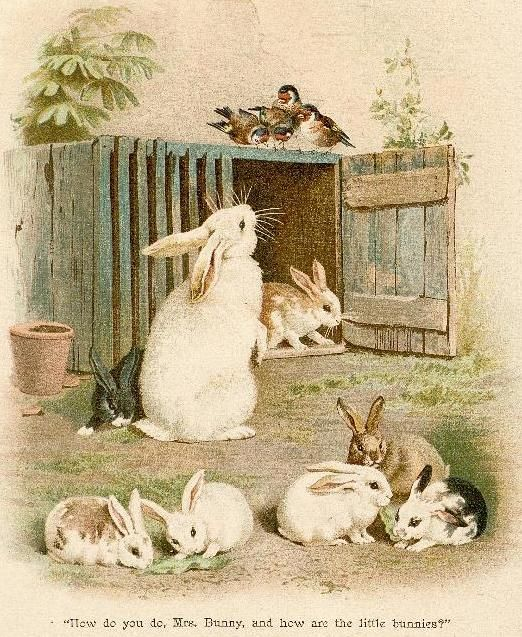 bumble button...vintage bunny images