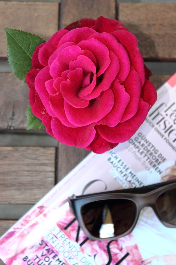 132 besten flowers... blumen... fiori ... plants Bilder auf ...