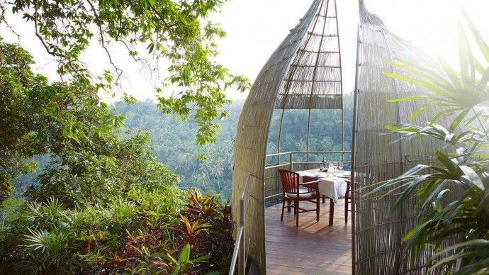 Enjoy Yoga and Spa Deluxe @ Kupu Kupu Barong ***** Resort & Tree Spa in Bali  #yogaholidays #bali #kupukupu