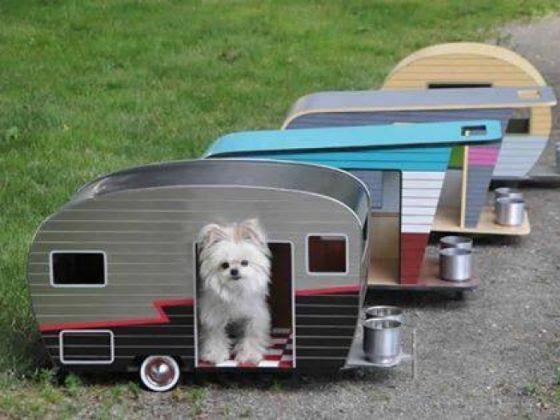 1000 id es sur le th me niche pour chat sur pinterest chats boutique chien et panier pour chat. Black Bedroom Furniture Sets. Home Design Ideas