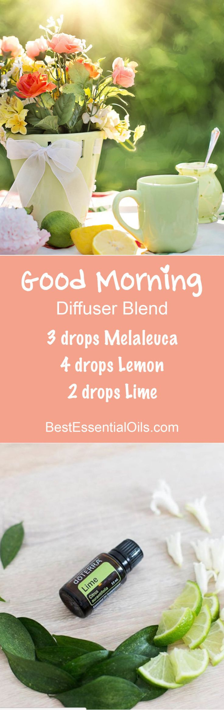 Good Morning Essential Oils Diffuser Blend ••• Buy dōTERRA essential oils online at www.mydoterra.com/suzysholar, or contact me suzy.sholar@gmail.com for more info.