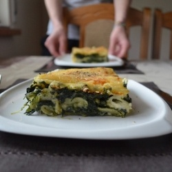 Spinach lasagne by whiness