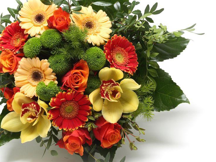 Lenyűgöző vegyes virágcsokor    #flowers#bouquet#viragszoro#viragszoroviragkuldes#sunshine#rose#gerbera#chrisanthemum#orchid