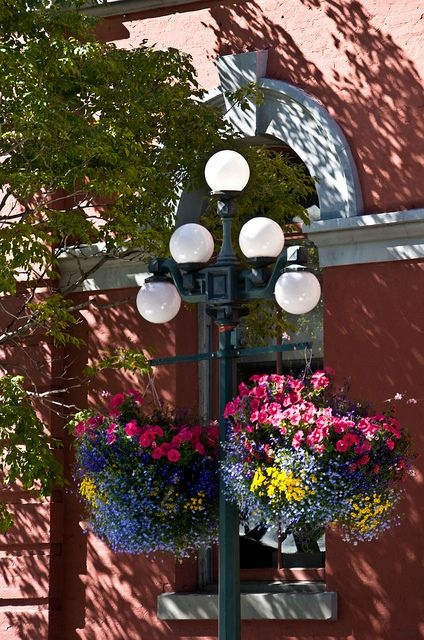 Hanging Flower Baskets Calgary : Victorian hanging baskets outside city hall victoria bc