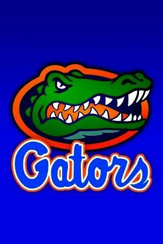 30 Best Images About Go Gators On Pinterest Football