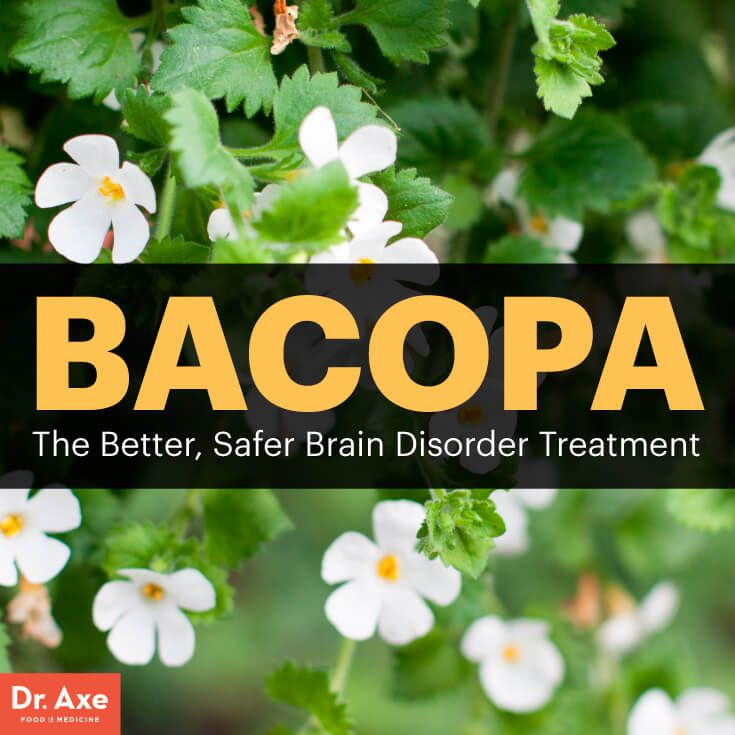 Bacopa: The Brain-Boosting, Safer ADHD Treatment - Dr. Axe