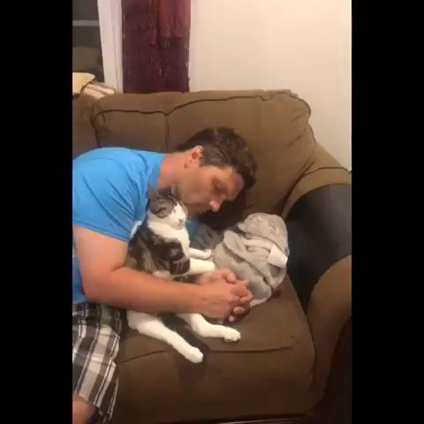 """The way he lifts his head up as if to say """"ok , continue """" lol Rocky is just adorable w his daddy !"""
