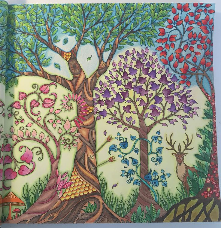 Johanna Basford Trees From Enchanted Forest Colored By Wen Z De DC Coloring BookEnchanted