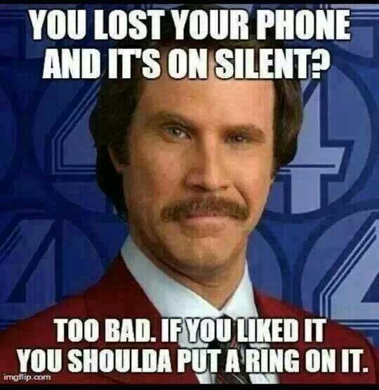 Funny Birthday Thank You Meme Quotes: 13 Best Ron Burgundy Memes Images On Pinterest