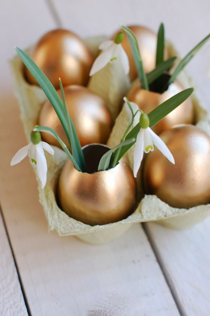 They're often the first sign of spring, but snowdrops look especially cheery planted in golden Easter eggs.