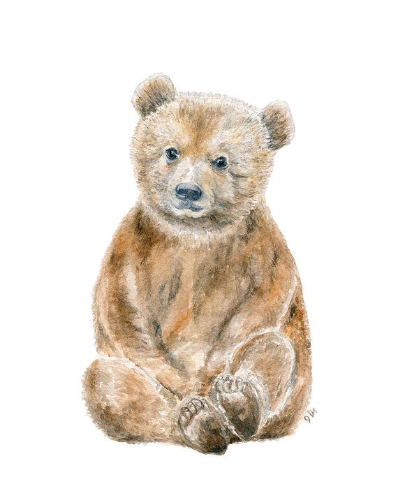 Bear Watercolor Print Baby Bear Watercolor by jamesriverstudios