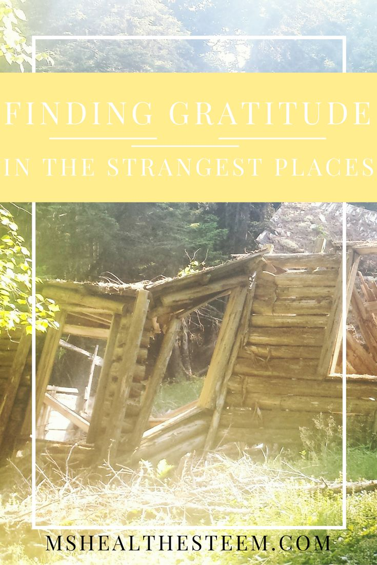 You can find gratitude in the strangest of places. I've even come to be grateful for the path that Graves Disease has led me on. Here's how I find that grateful place.
