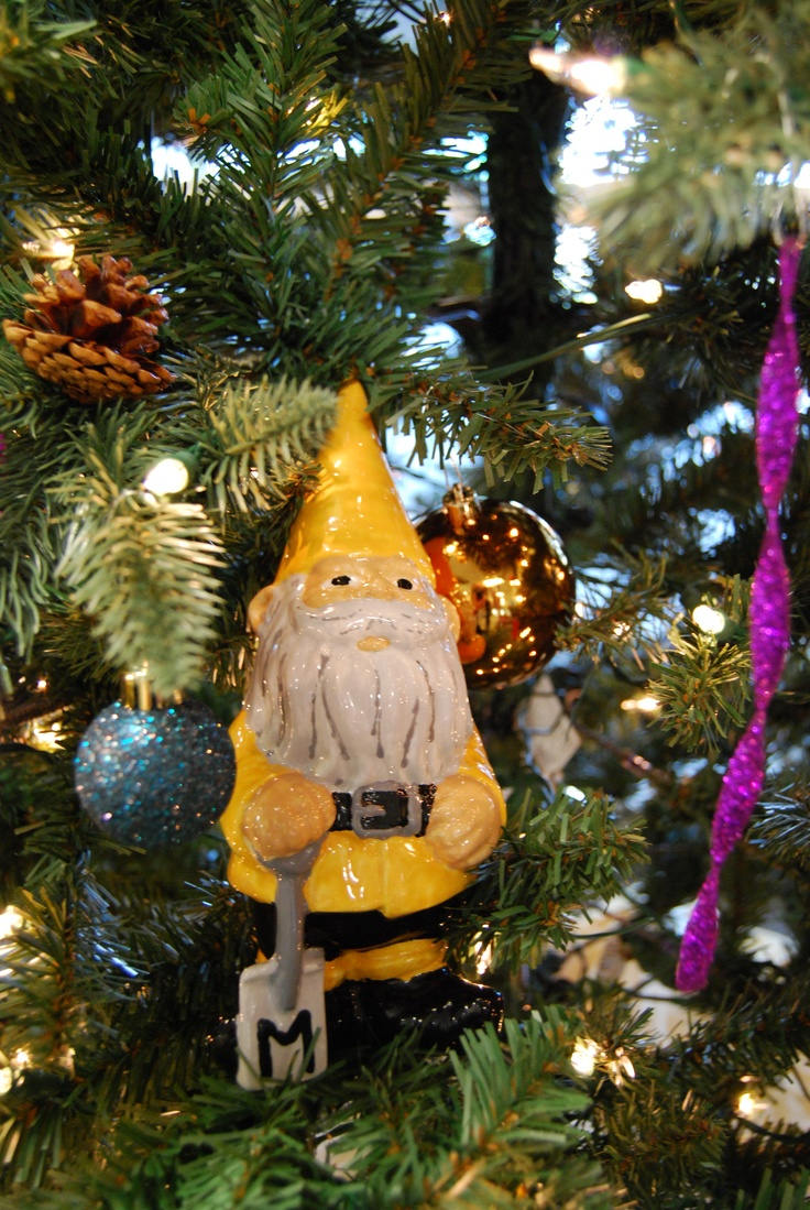 Kevin The Gnome Explores The Christmas Tree In The Manchester University  Office Of Admissions.