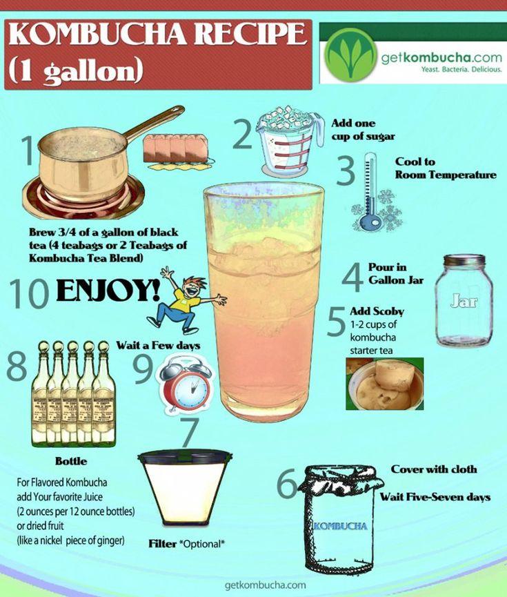 Make your own Kombucha drink