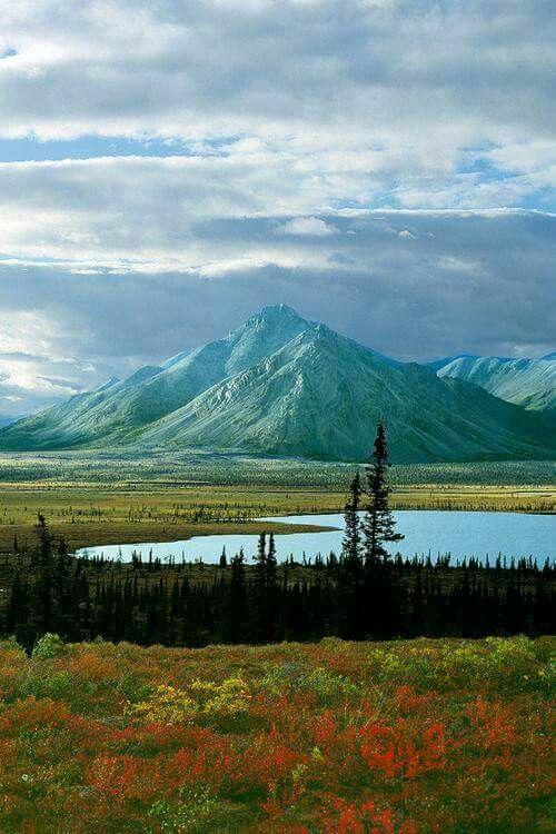 Sheenjk River Valley, Artic National Wildlife Refuge, Alaska.