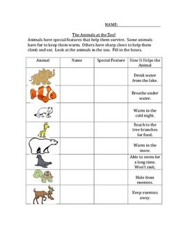 Animal Activity for Thematic units with Animals....