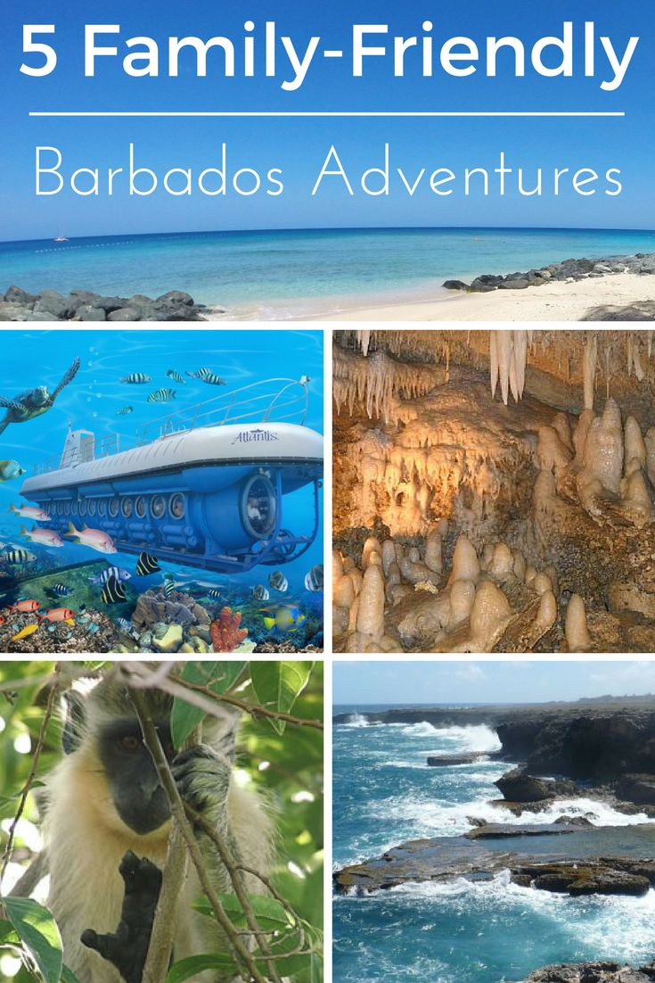 Families find fun and adventure in Barbados!