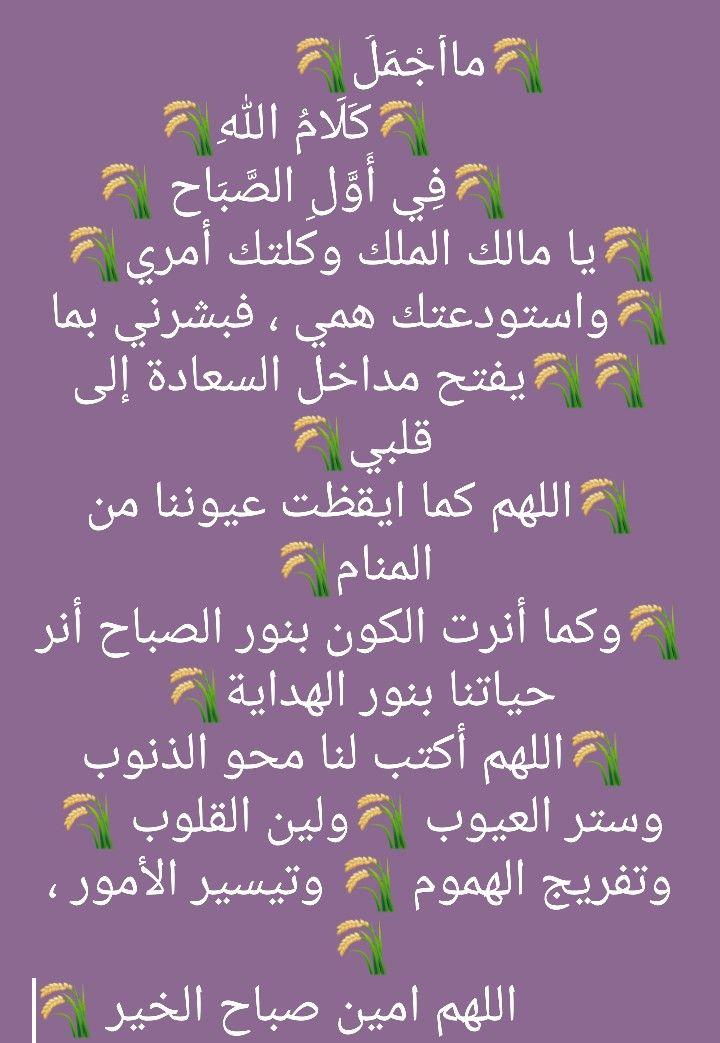 Pin By Basilf Amin On الكلمة الطيبة Morning Greeting Morning Quotes Greetings