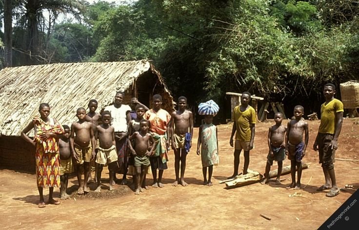 people of the congo rainforest In anthropology, pygmy peoples are ethnic groups whose average height is unusually short the term pygmyism is used to describe the phenotype of endemic short stature (as opposed to disproportionate dwarfism occurring in isolated cases in a population.
