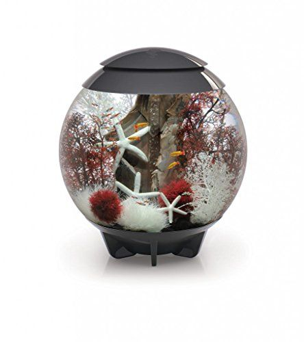 25 best ideas about biorb fish tank on pinterest fish for Decoration aquarium 60 litres