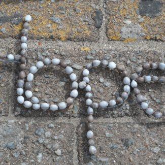 Sea shell inspiration on Margate Beach, KZN