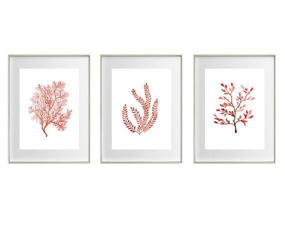 Coral Watercolour Art Prints / Set of 3 / Red-orange Nautical