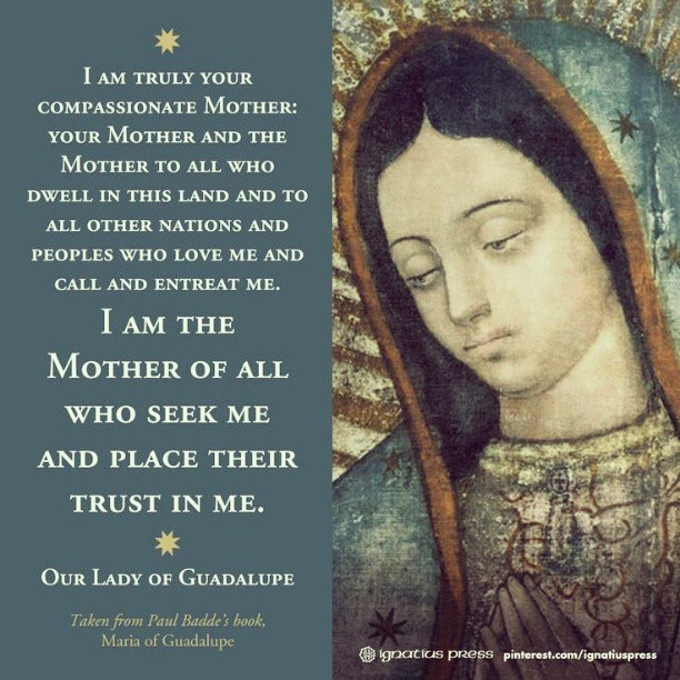 I am truly your compassionate Mother… - Our Lady of ...